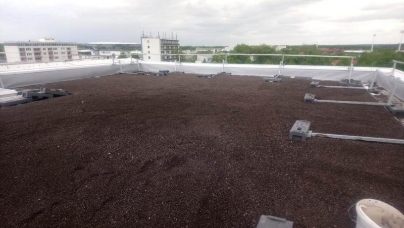 Dachbegrünung des Kontorhauses in Wolfsburg.