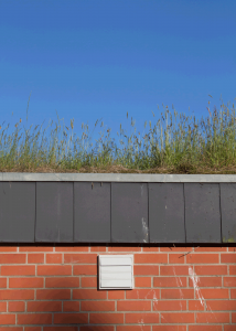 Ein Gründach ist schön, effizient und gut für die Umwelt.